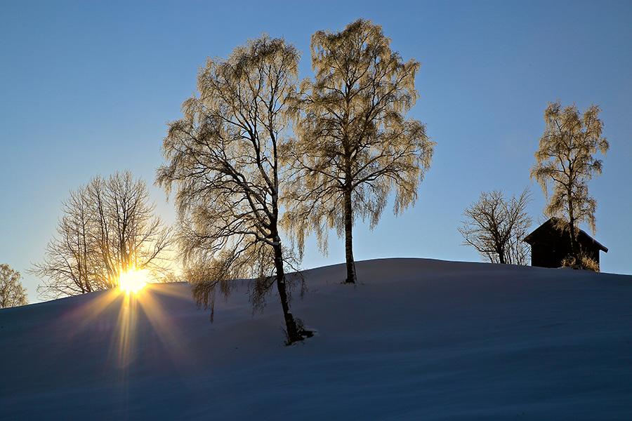 Winter in Serfaus-Fiss-Ladis