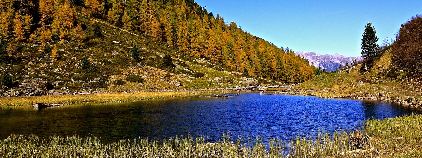 Herbstbild (Slider)